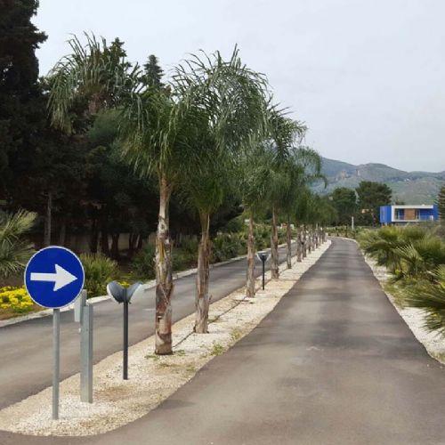 Borgo Aranci - Viale Principale